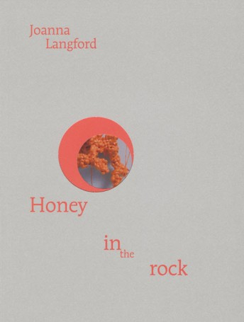 Honey in the Rock