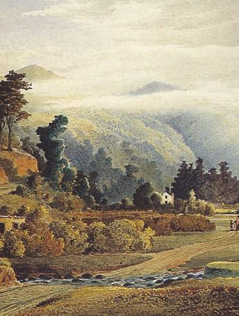 Leith Valley, near Dunedin